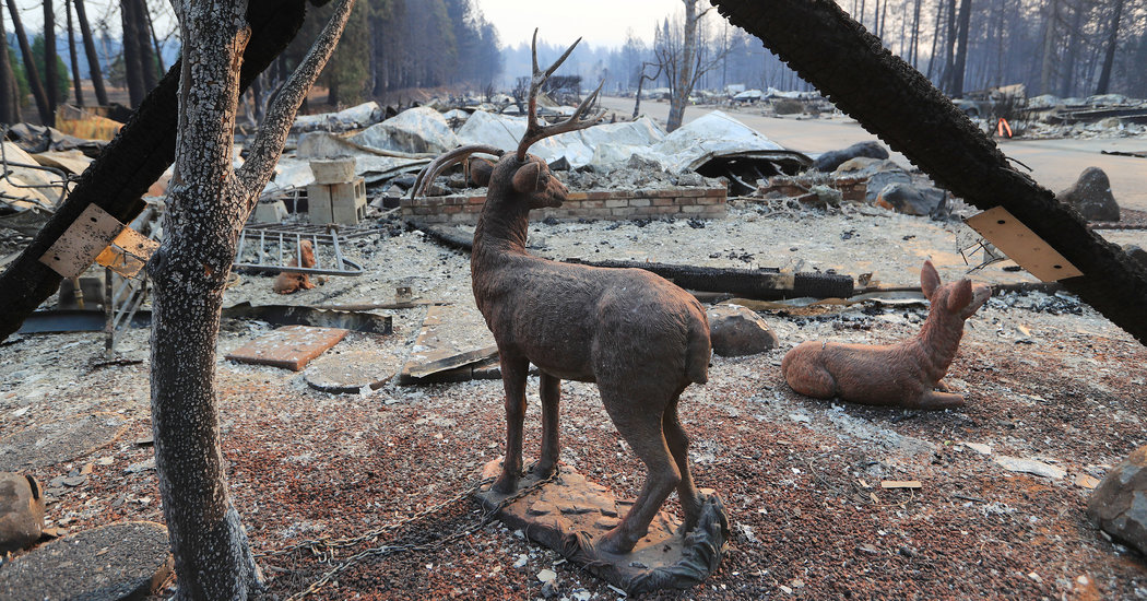 California Wildfires Updates: 42 Dead in Camp Fire and Toll Expected to Rise